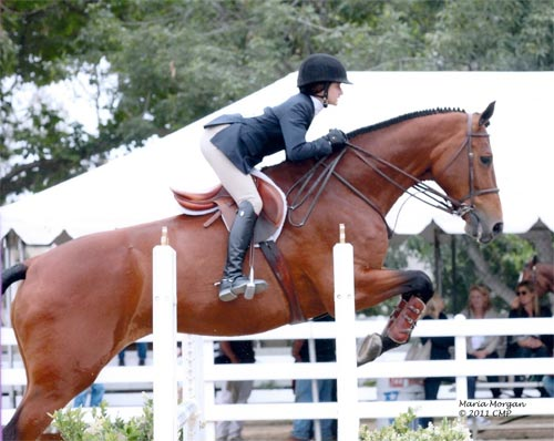 Daphne Harrington and Piper Equitation 12-13 2011 Showpark Ranch & Coast Photo Captured Moment