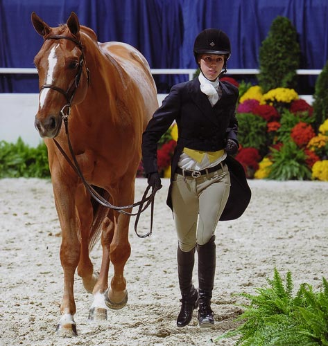 Gabbi Langston and Azlan Large Junior Hunter Stake Class 2011 Washington International Horse Show Photo Shawn McMillen