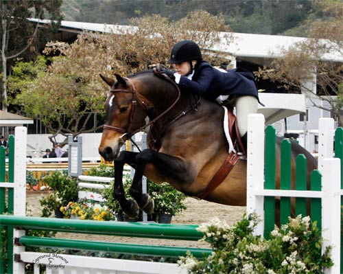 Ashley Pryde and Truly Champion Amateur Owner Hunter Winner Amateur Owner Hunter Classic 2011 Showpark Ranch and Coast Photo Captured Moment