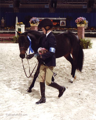 Shaffer Raposa and Tuscany owned by West End Stables Winner Medium Pony Hunters 2007 Washington International Photo Al Cook