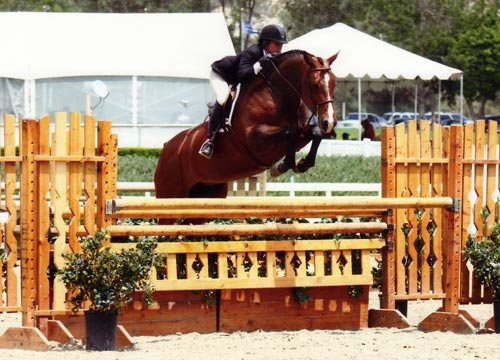 Teddi Mellencamp and Conversation Piece owned by Jessica Singer Winner Regular Conformation Hunters 2010 Showpark Photo Horse in Sport