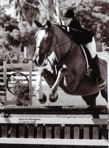 Ashley Pryde and Wesley Champion Small Junior Hunters 16-17 2010 Showpark Photo Captured Moment
