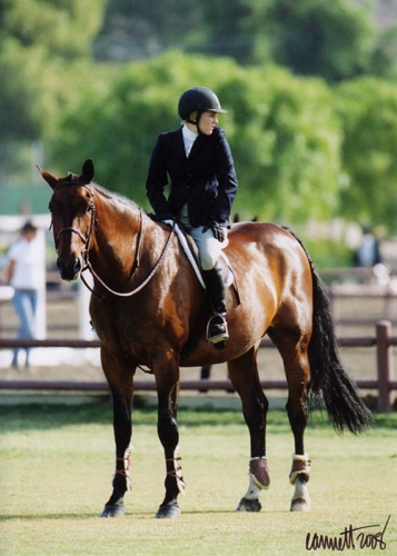 Nicole Hasteltine and Magic Act 2008 Large Junior Hunter 16-17 Champion Photo Cathrin Cammett
