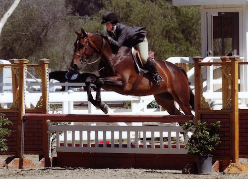 "Meredith Mateo and Carpendale Amateur Owner Hunter 18-35 3'3"" 2014 Showpark Photo Captured Moment"