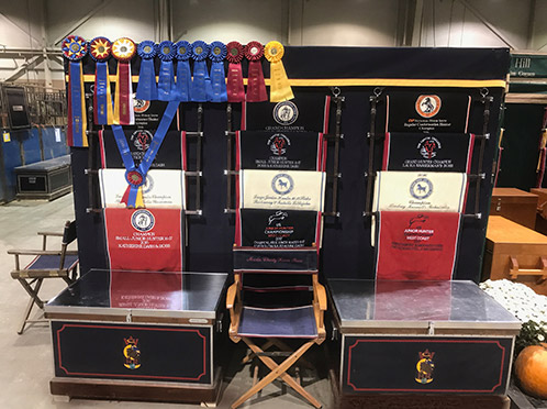 Awards on display 2017 Pennsylvania National