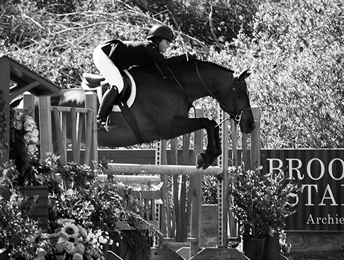 Stella Wasserman and Boss Small Junior Hunter Champion 2018 Blenheim Spring Classic II