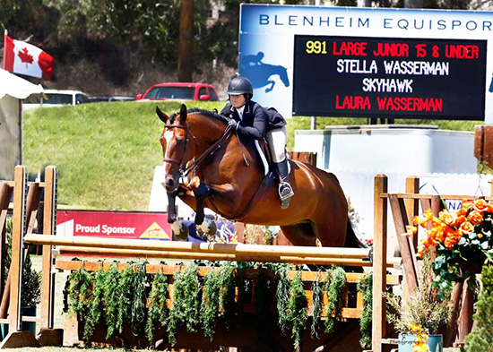 Stella Wasserman and Skyhawk 2018 Showpark Large Junior Hunter 15 & Under Photo by Captured Moment
