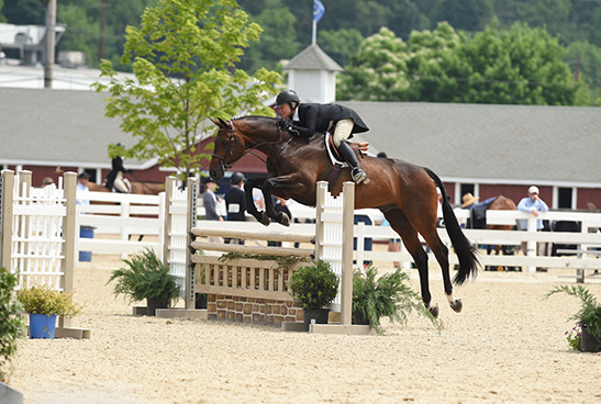 "Virginia Fout and Carma 2018 Devon Horse Show Amateur Owner Hunter 3'3"" Over 35, Champion"