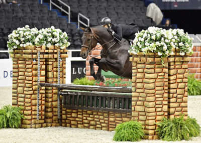"Virginia Fout and Carma 2018 National Horse Show Amateur Owner Hunter 3'3"" Over 35, Champion Photo by Shawn McMillen"