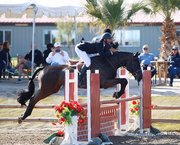 Jorge Hidalgo Duran and Charlie Boy Amateur Owner Hunter 36 & Over 2019 HITS Desert Circuit