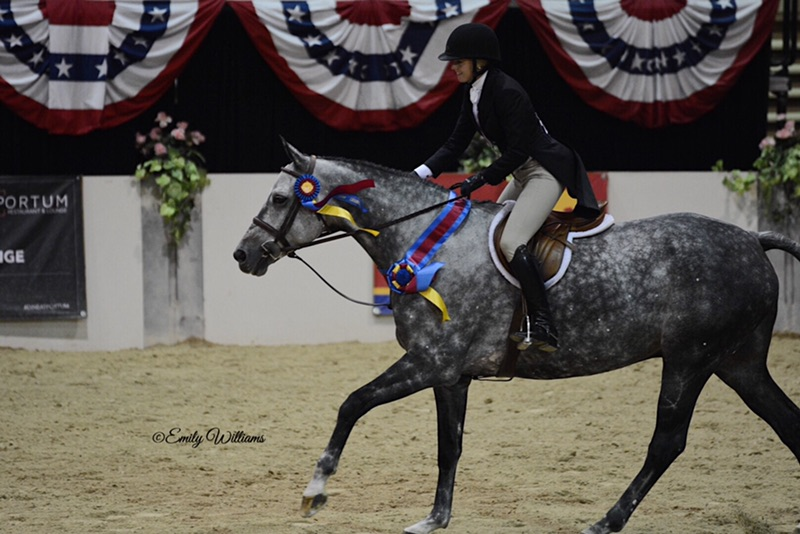 Karli Postel and Banksy 2018 Capital Challenge WCHR Emerging Professional National Champion Photo by Emily Williams