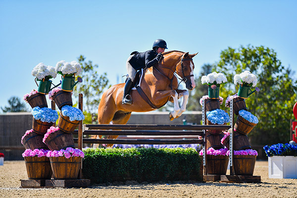 Stella Wasserman and Ecole Lathrop's Banderas Large Junior Hunter 2019 Giant Steps Charity Classic