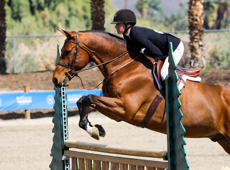 Kyra Russell and Teton Farm's Favorite Large Junior Hunter 15 & Under 2020 Desert Circuit