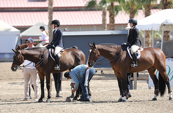 Stella Wasserman and Skyhawk Equitation 2020 Desert Circuit
