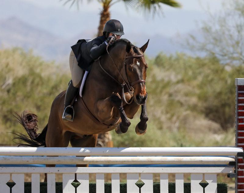 Stella Wasserman and Outshine Champion Large Junior Hunter Weeks 2, 3, 6 2020 Desert Circuit