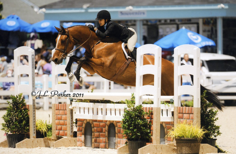 Laura Wasserman and Overseas Amateur Owner Hunter Photo by JL Parker