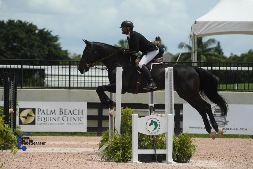 Jorge Hidalgo and Charlie Boy 2020 June ESP, Spring 1 Adult Equitation Photo by Anne Gittins