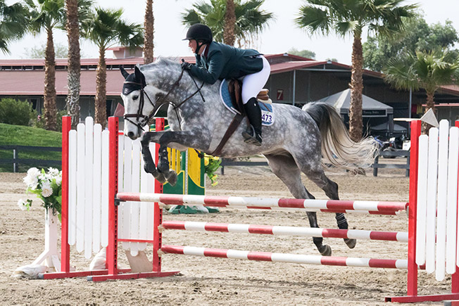 Bridget Samuels and Dapper Low Adult Amateur Jumpers 2016 HITS Desert Circuit Photo by Chelsea Samuels