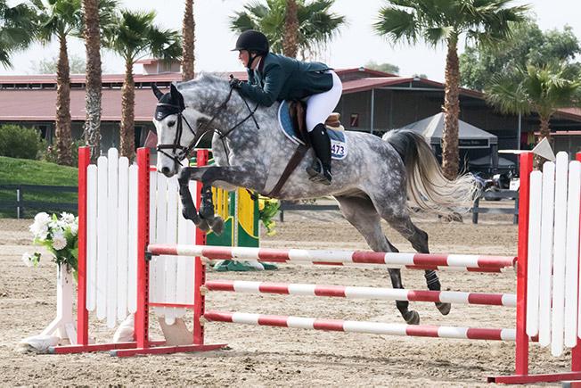 Bridget Samuels and Dapper Low Adult Amateur Jumpers 2016 HITS Desert Circuit Photo by Chelsea Samuels