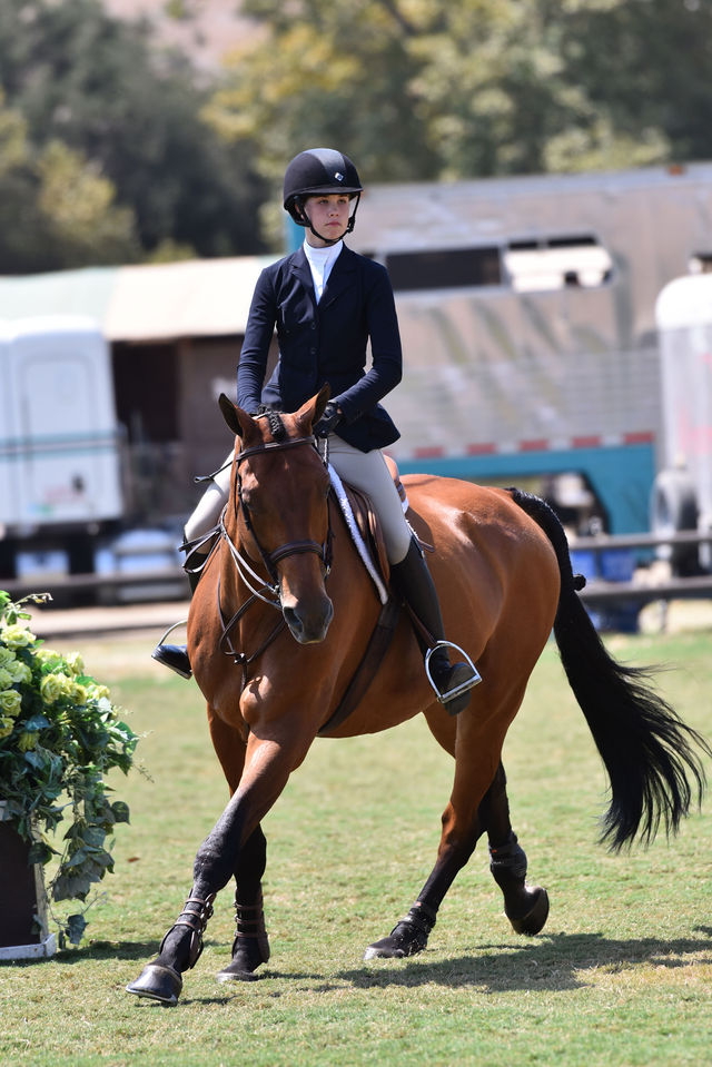 "Vivienne Wood and Way Out West USHJA 3'3"" Hunter Seat Medal Final - West, Reserve Champion 2020 Blenheim Summer Festival Photo by Amy McCool"