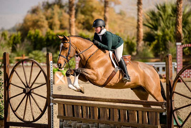 "Violet Tatum and Fred the Horse Jr Hunters 3'6"" 15 & U 2020 Desert Holiday Photo by Sara Shier"